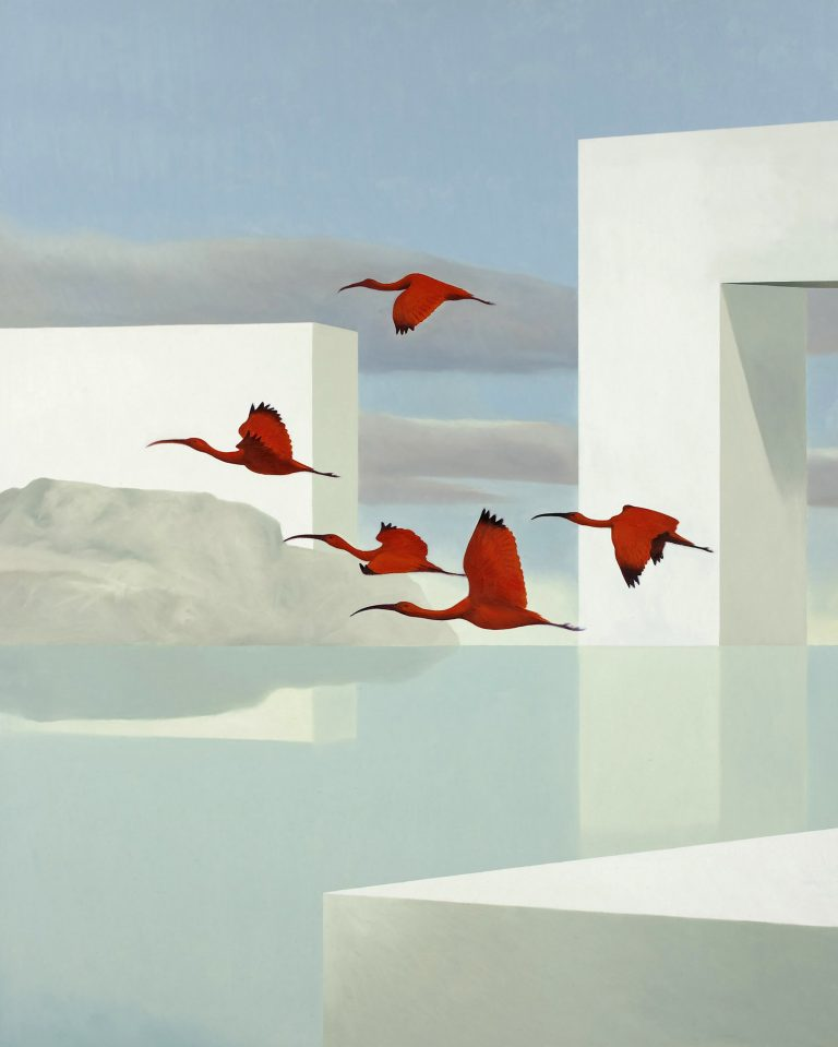 Ibis scarlatti Olio su tela 100x80 cm 2011